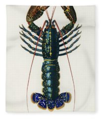 Illustrated Crimson Crawfish - Palemon Ornatum Fleece Blanket