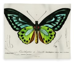 Illustrated Green Birdwing - Ornithoptera Priamus Fleece Blanket