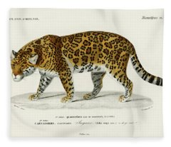Illustrated Jaguar - Panthera Onca Fleece Blanket