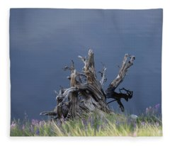 Stump Chambers Lake Hwy 14 Co Fleece Blanket