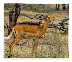 Impala On The Serengeti Fleece Blanket
