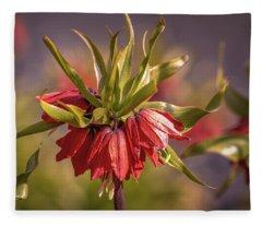 Imperial Crown #g3 Fleece Blanket