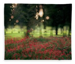 Impression At The Yarkon Park Fleece Blanket