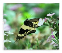 Incoming Butterfly Fleece Blanket