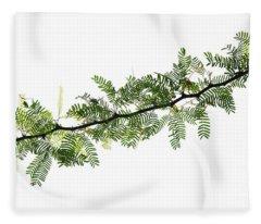 Indian Needle Bush Tree Leaves Fleece Blanket