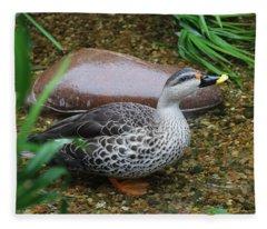 Indian Spot-billed Duck Fleece Blanket