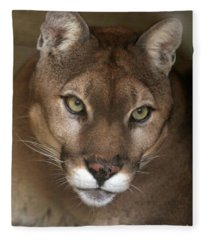 Intense Cougar Fleece Blanket