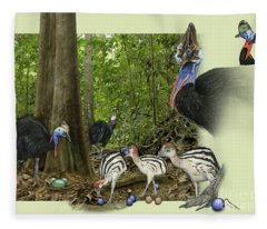Zoo Nature Interpretation Panel Cassowaries Blue Quandong Fleece Blanket