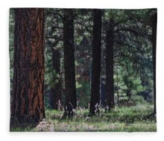 Into The Light There Be Shadows Fleece Blanket