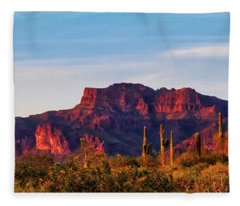 Fleece Blanket featuring the photograph Into The West by Rick Furmanek
