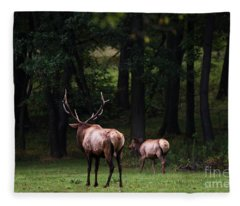 Into The Wilderness Fleece Blanket