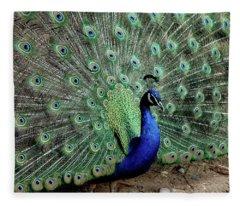 Iridescent Blue-green Peacock Fleece Blanket