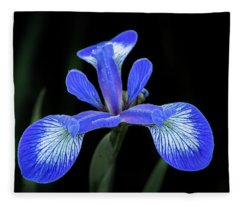Iris #2 Fleece Blanket