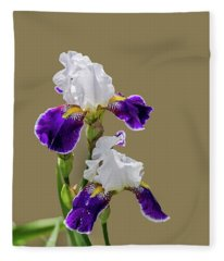 Iris Germanica In Purple And White Fleece Blanket