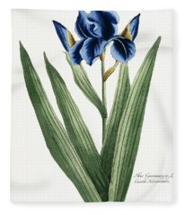 Iris Germanica Fleece Blanket