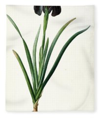 Iris Luxiana Fleece Blanket