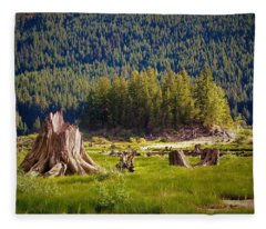 Keechelus Lake Fleece Blankets
