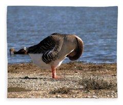 Iv Got An Itch Fleece Blanket