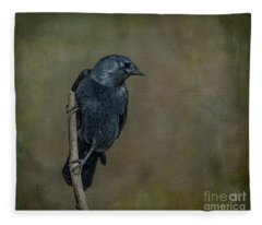 Jackdaw Fleece Blanket