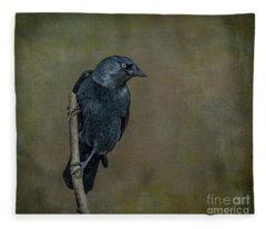 Jackdaw Fleece Blanket