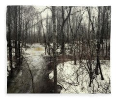January Thaw At Hunter Brook Fleece Blanket