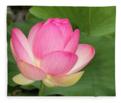 Japanese Lotus Almost Ready To Bloom Fleece Blanket