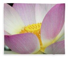 Japanese Lotus In Full Bloom Fleece Blanket