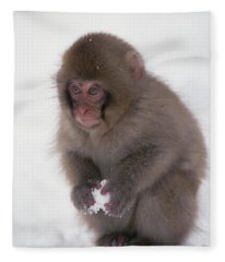 Japanese Macaque Macaca Fuscata Baby Fleece Blanket