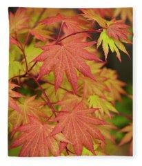 Japanese Maple Fleece Blanket