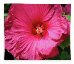 Jazzberry Jam Fleece Blanket