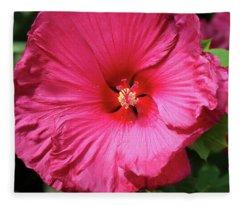 Jazzberry Jam Fleece Blanket