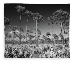 J.d. Prarie Fleece Blanket