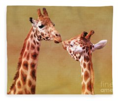 Je T'aime Giraffes Fleece Blanket