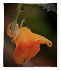Jewelweed Bejeweled Fleece Blanket