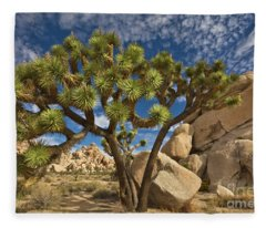Joshua Tree And Blue Sky Fleece Blanket