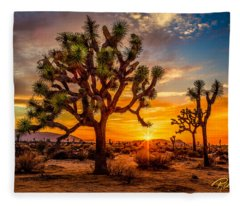 Joshua Tree Glow Fleece Blanket
