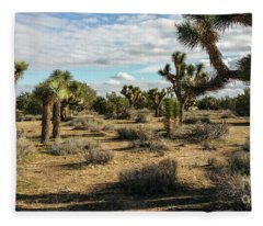 Joshua Tree's Fleece Blanket