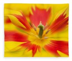 Joyful Life Fleece Blanket