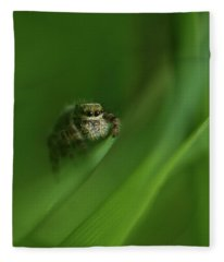 Jumping Spider Contemplating Life Fleece Blanket