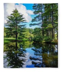 June Day At The Park Fleece Blanket
