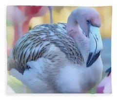Juvenile Flamingo Pastles Square Fleece Blanket
