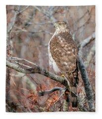 Juvenile Sharp-shinned Hawk Fleece Blanket