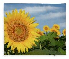 Kansas Sunflower Fleece Blanket