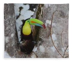 Keel-billed Toucan #2 Fleece Blanket