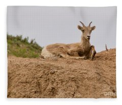 Keeping Watch Fleece Blanket
