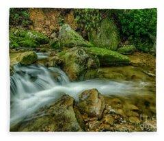 Kens Creek In Cranberry Wilderness Fleece Blanket