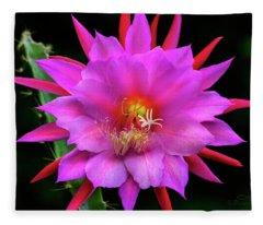 Kimnach's Pink Orchid Cactus Fleece Blanket