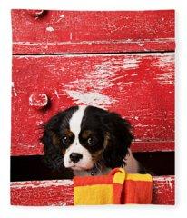 King Charles Cavalier Puppy  Fleece Blanket