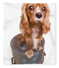 King Charles Spaniel Puppy Fleece Blanket