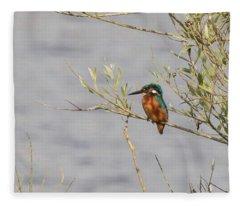 Kingfisher Waiting Fleece Blanket